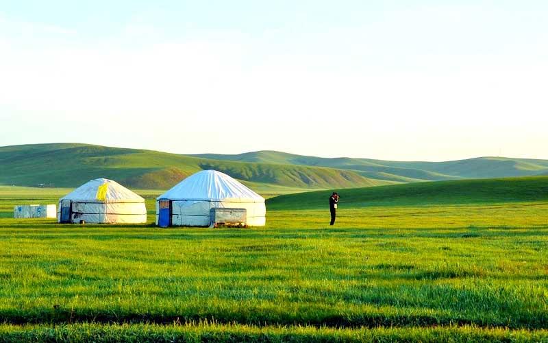 Đồng cỏ Nội Mông bao la rộng lớn và xanh ngát khi mùa hè tới